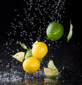 Citrus fruit in water splash on black background - PhotoDune Item for Sale
