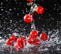 Cherry tomato in water splash on black background - PhotoDune Item for Sale