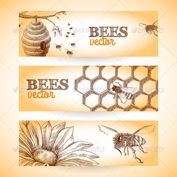 GraphicRiver Bee Banner Sketch 7734025