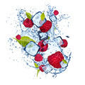 Ice raspberries on white background - PhotoDune Item for Sale