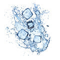 Ice cubes and water splashes on white background - PhotoDune Item for Sale