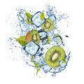 Ice kiwi on white background - PhotoDune Item for Sale