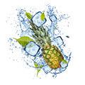 Ice pine-apple on white background - PhotoDune Item for Sale