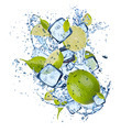 Ice limes on white background - PhotoDune Item for Sale