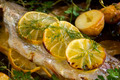 Lemon On Trout Fillet - PhotoDune Item for Sale