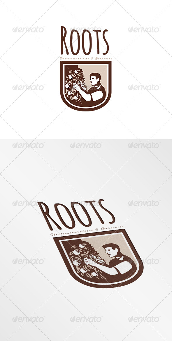GraphicRiver Roots Horticulturists and Gardeners Logo 7775664