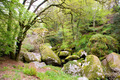 Boulders at Huelgoat in Brittany, France - PhotoDune Item for Sale