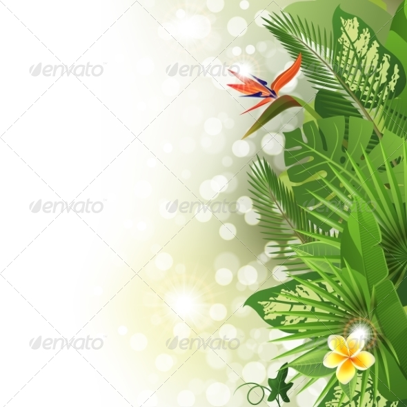 GraphicRiver Tropical Background 7796310