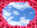 frame from red roses and background from cloudy sky - PhotoDune Item for Sale