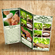 TriFold Spa Brochure - GraphicRiver Item for Sale