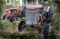 two old rusty tractor in the forest - PhotoDune Item for Sale