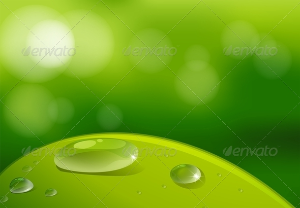 GraphicRiver A Leaf with Waterdrops 7839731