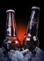 Ice Cold Class Beer Bottles on Black - PhotoDune Item for Sale