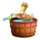 Duck a Bird in Bath - GraphicRiver Item for Sale