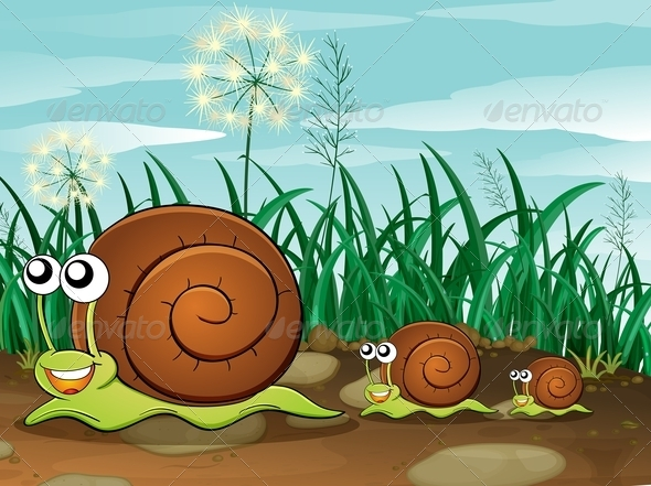 GraphicRiver Three Snails 7852584