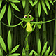 Frog in a Jungle - GraphicRiver Item for Sale