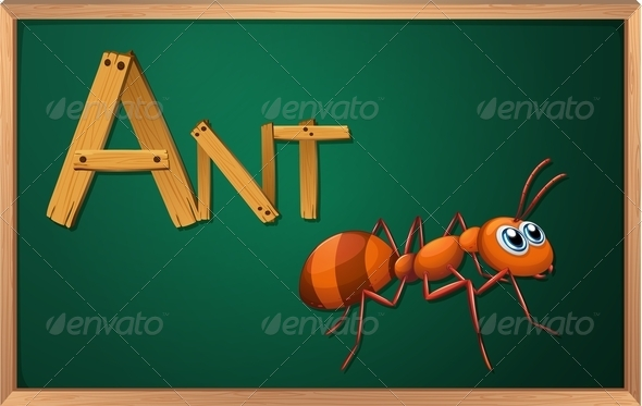 GraphicRiver Blackboard with Ant 7853480