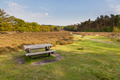 Veluwe Nature near Schaarsbergen - PhotoDune Item for Sale