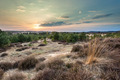 Sunset over Heather and Sand in the Veluwe Area - PhotoDune Item for Sale