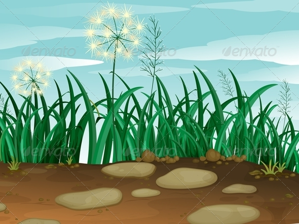 GraphicRiver Grass Under the Sky 7859679