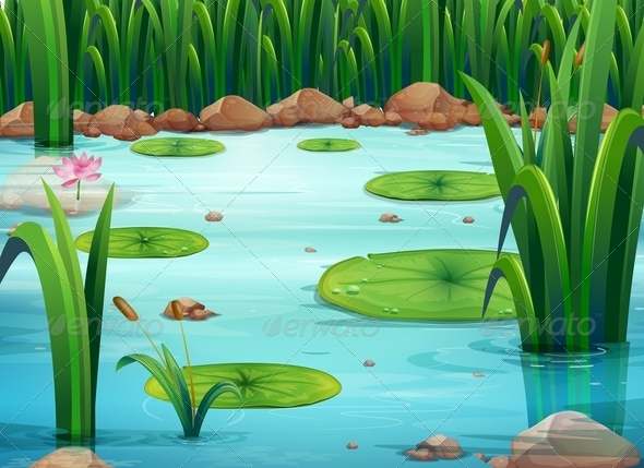 GraphicRiver Pond with Lilly Pads 7860798