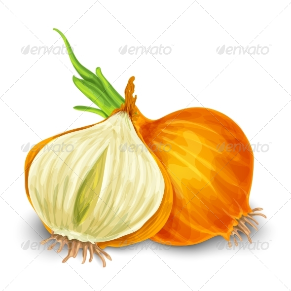 GraphicRiver Onion 7864697