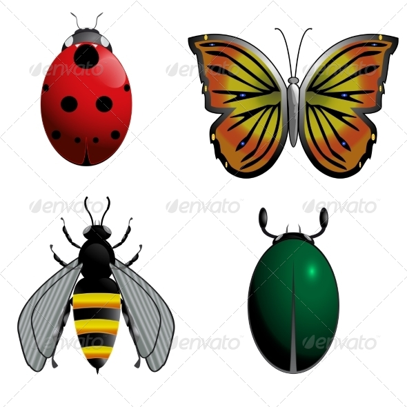 GraphicRiver Insect Set 7867600