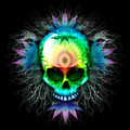 Psychedelic Skull Marijuana - PhotoDune Item for Sale