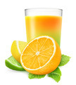Citrus juice - PhotoDune Item for Sale