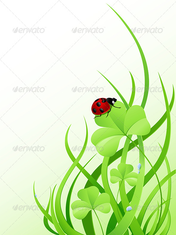 GraphicRiver Green Grass and Ladybird 7880589