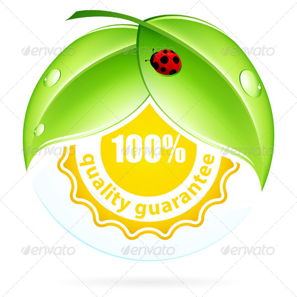 GraphicRiver Green Leaves with Ladybird 7880789