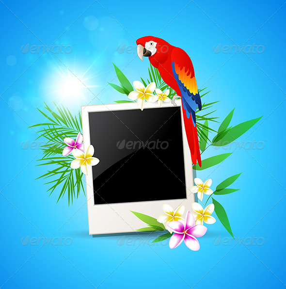 GraphicRiver Background with Red Parrot and Photo 7880868