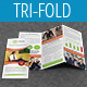 Multipurpose Business Tri-Fold Brochure Vol-24 - GraphicRiver Item for Sale