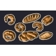 Illustration of Bread - GraphicRiver Item for Sale