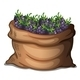 Sack of fresh blackberries  - GraphicRiver Item for Sale