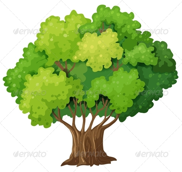 GraphicRiver Old Tree 7902902