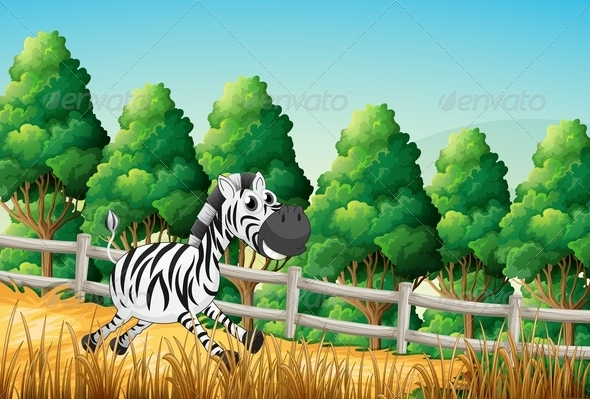 GraphicRiver A Zebra Running in a Paddock 7926121