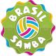Brasil Samba Infographic Elements - GraphicRiver Item for Sale