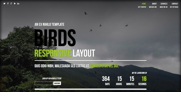 ThemeForest Birds Responsive Coming Soon Page 7932615