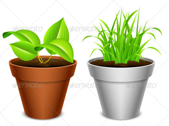GraphicRiver Plant in a Pot 7939259
