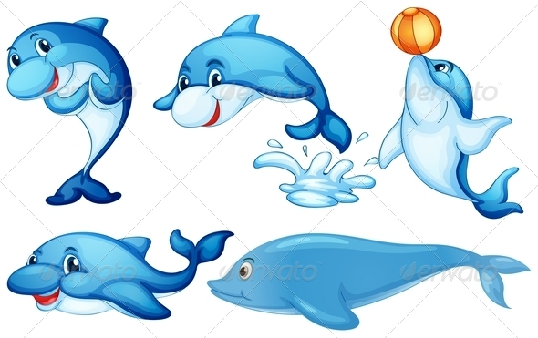 GraphicRiver Playful Dolphins 7944766