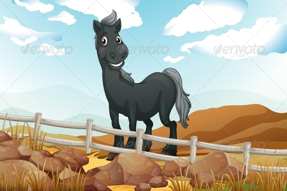 GraphicRiver Smiling Gray Horse Near a Wooden Fence 7956970