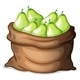Sack of Pears - GraphicRiver Item for Sale