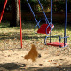Empty Swing - VideoHive Item for Sale