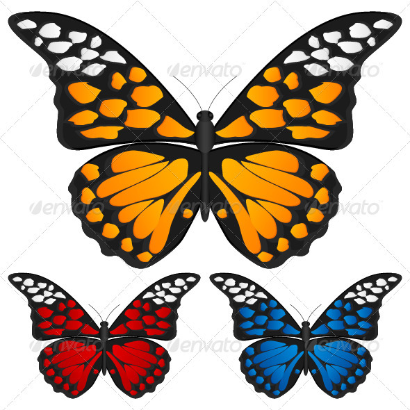 Butterfly  GraphicRiver - Vectors -  Characters  Animals 840665