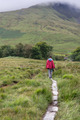 Male Trekker Walks Along a Mountain Path in Snowdonia - PhotoDune Item for Sale