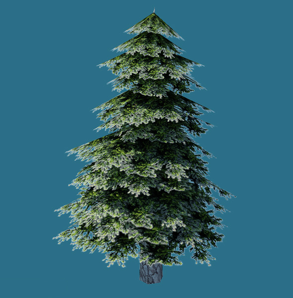 3DOcean Low Poly Pine Tree Model 855755