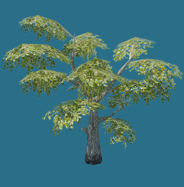 3DOcean Low Poly Tree Model 855816