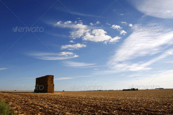 Large stack of hay bales against a blue sky - Stock Photo - Images