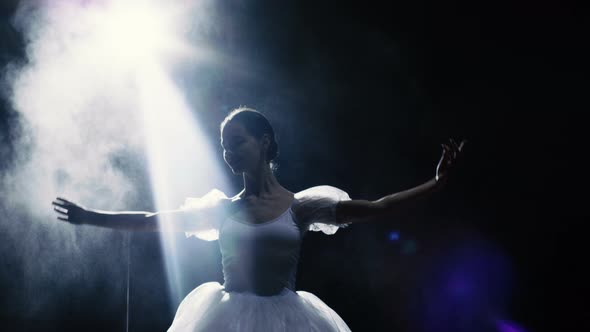 VideoHive Mid Shot of a Beautiful Young Ballerina Spinning Gracefully in the Spotlight 19473684